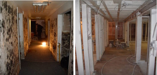 mold restoration in Atlanta before and after